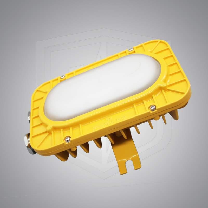 <b>BFC8123系列防爆LED泛光灯</b>
